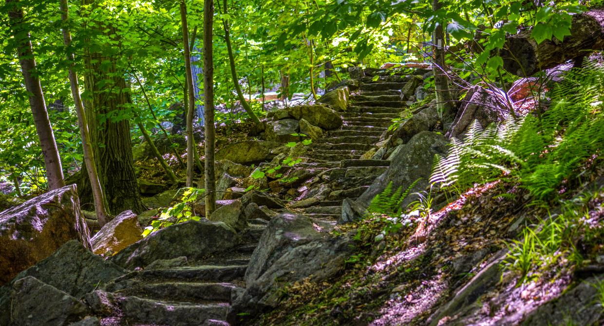 Appalachian Trail at Bear Mountain State Park. Photo by Josh Howard.