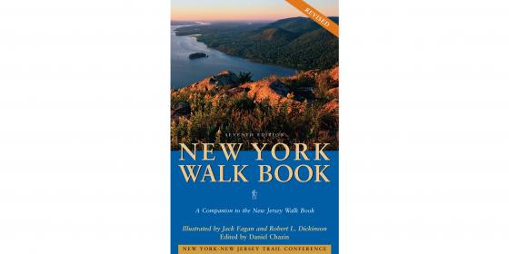 Image of cover of New York Walk Book
