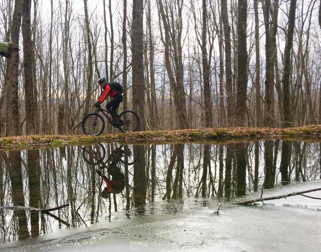 Mountain biker in the Catskills. Photo by Alicia Katsur.