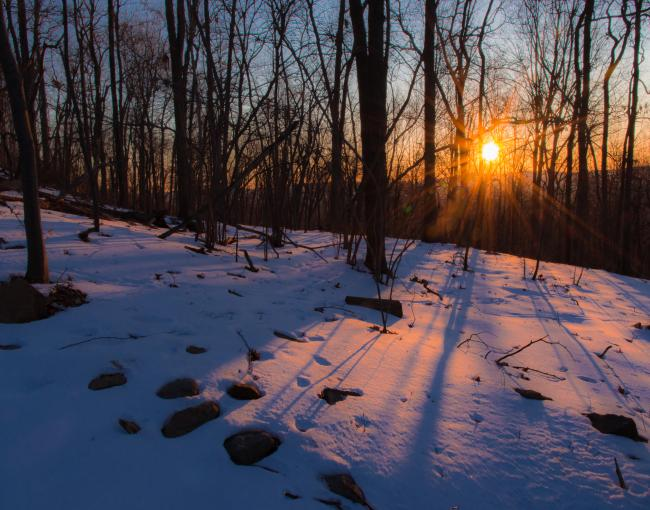 Sunrise on Schunnemunk Mountain State Park. Photo by Steve Aaron.