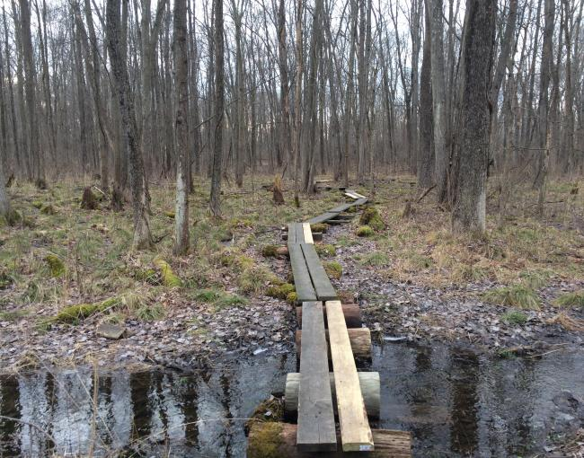 Appalachian Trail puncheon replacement project near Wallkill Wildlife Refuge.